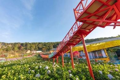 Đà Lạt: Vườn Thượng Uyển Bay - KDL DaLaLand - Cầu Vàng - Đồi Chè - Linh Ẩn Tự